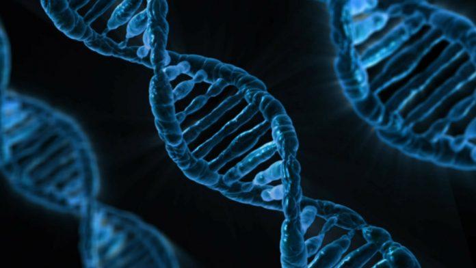 Skin DNA 30 Test